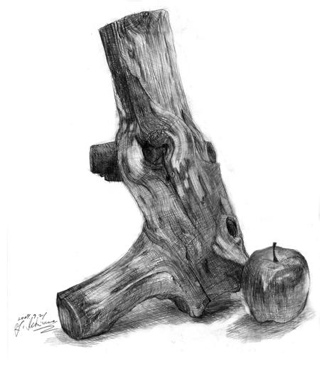 市川木のデッサン